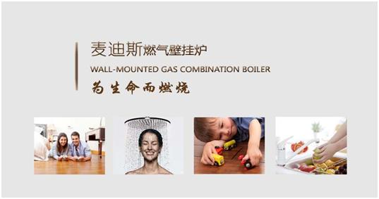 壁挂炉 热水器 采暖热水炉 地暖